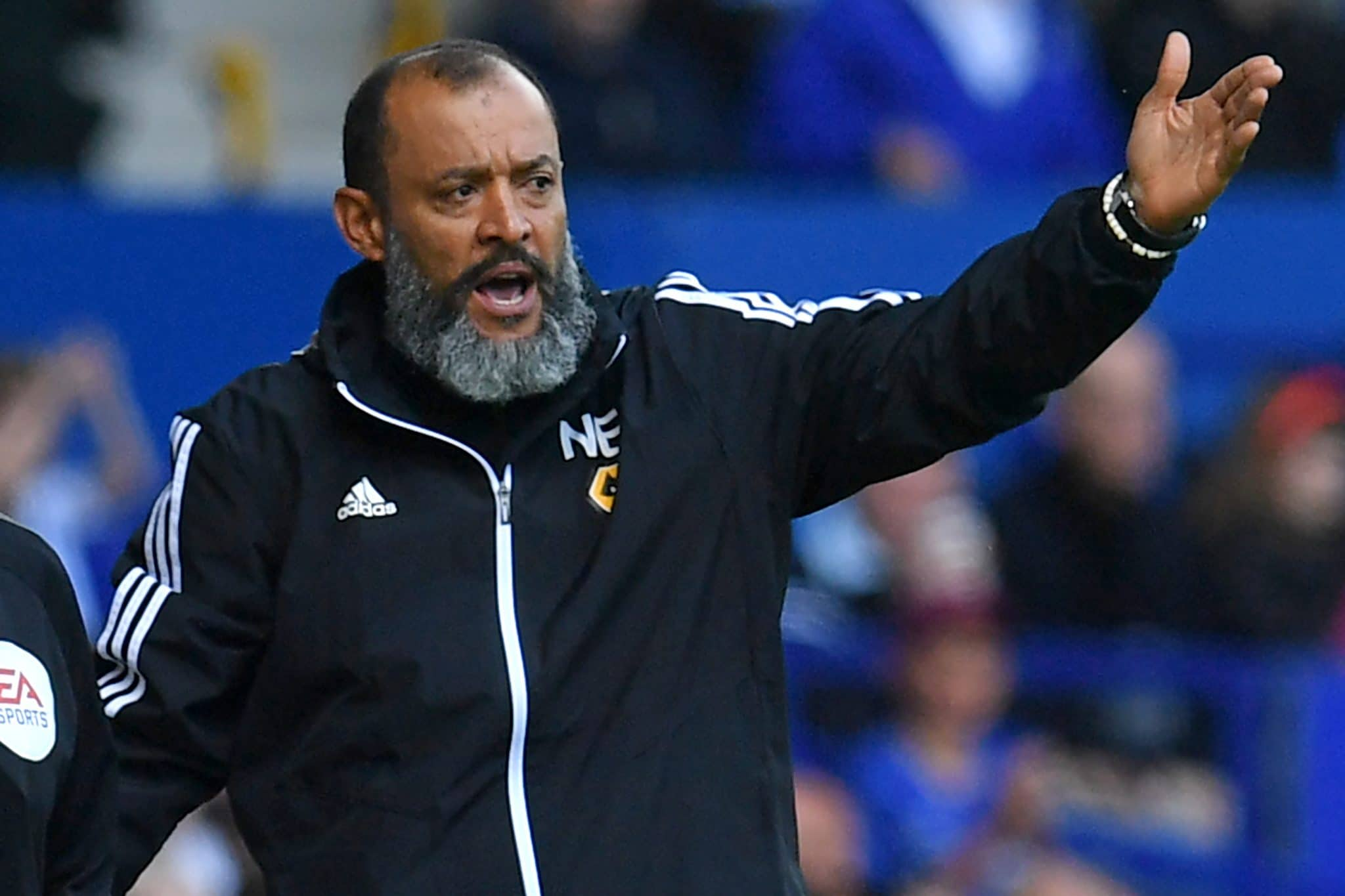 Wolverhampton Wanderers manager Nuno Espírito Santo