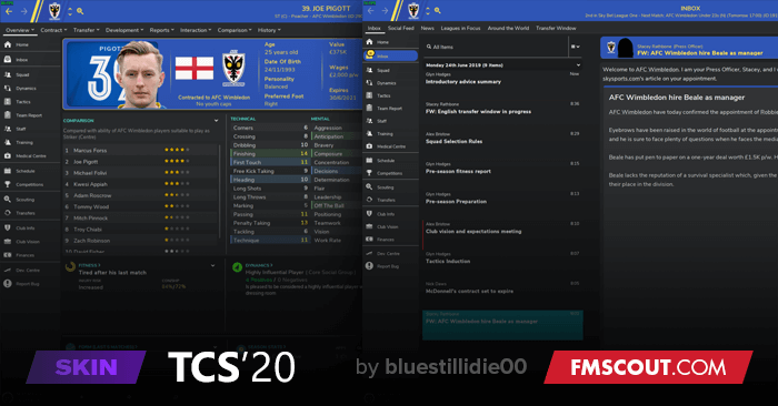 Football Manager Skins: how to choose, download and install the best ones