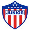 Fluminense vs Junior Prediction: Odds & Betting Tips (19/05/2021)